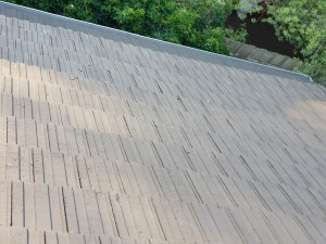 colorbond gutter guard forest hill