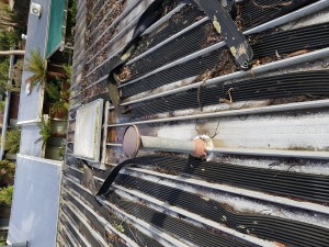 kew roof leak